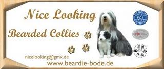 www.beardie-bode.de
