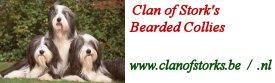 www.clanofstorks.be