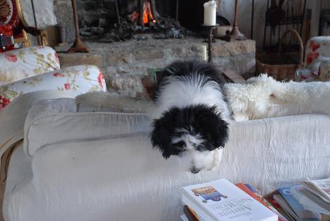 Charlotte lernt lesen