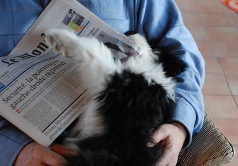 Charlotte liest Le Monde