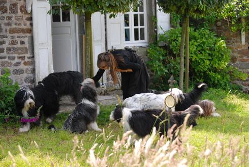 Angelika mit 6 Beardies und Quattek
