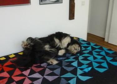Pitu schläft wie seine Schwester Aiyana