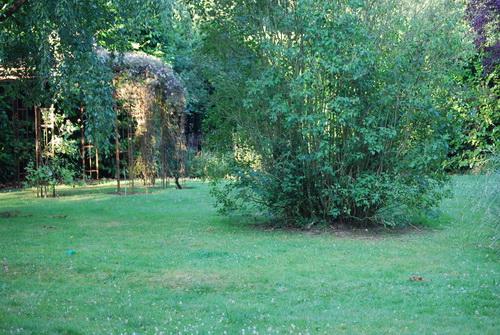 Toller Garten, alles eingezäunt!