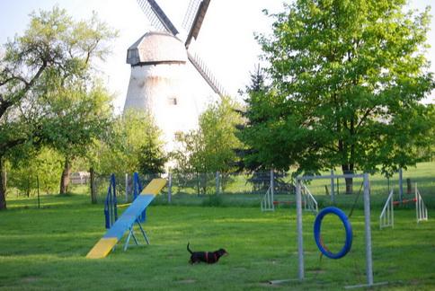 """Hundeplatz """"An der Windmühle"""""""
