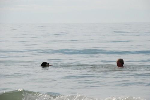Herr und Seehund!