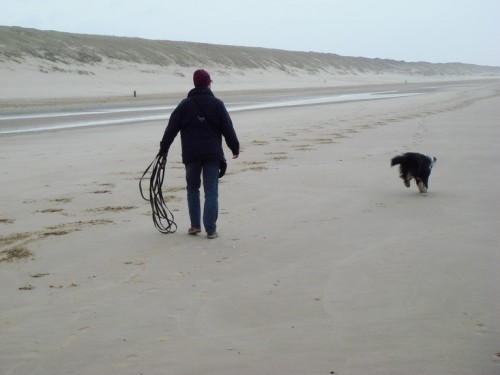 Big fun - is there any dog?