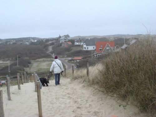 The land behind the dunes!