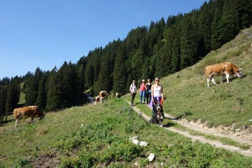 Im Urlaub in Bad Tölz mit Familie!