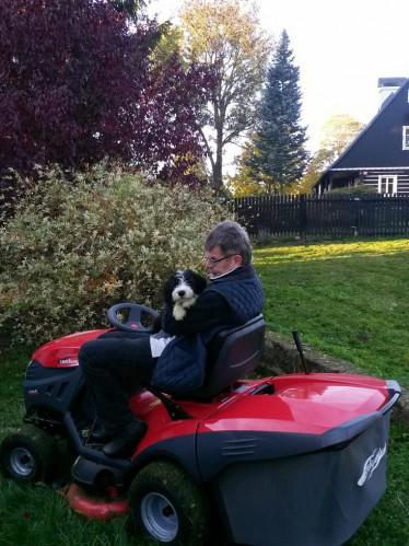 Helfen beim Rasenmähen