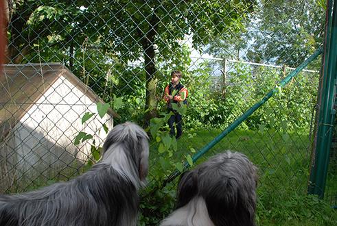 Weisst Du was die Kinder im Hundegarten machen?