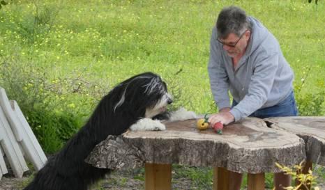 Spielen mit Joachim