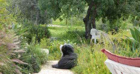 Chillen im Garten